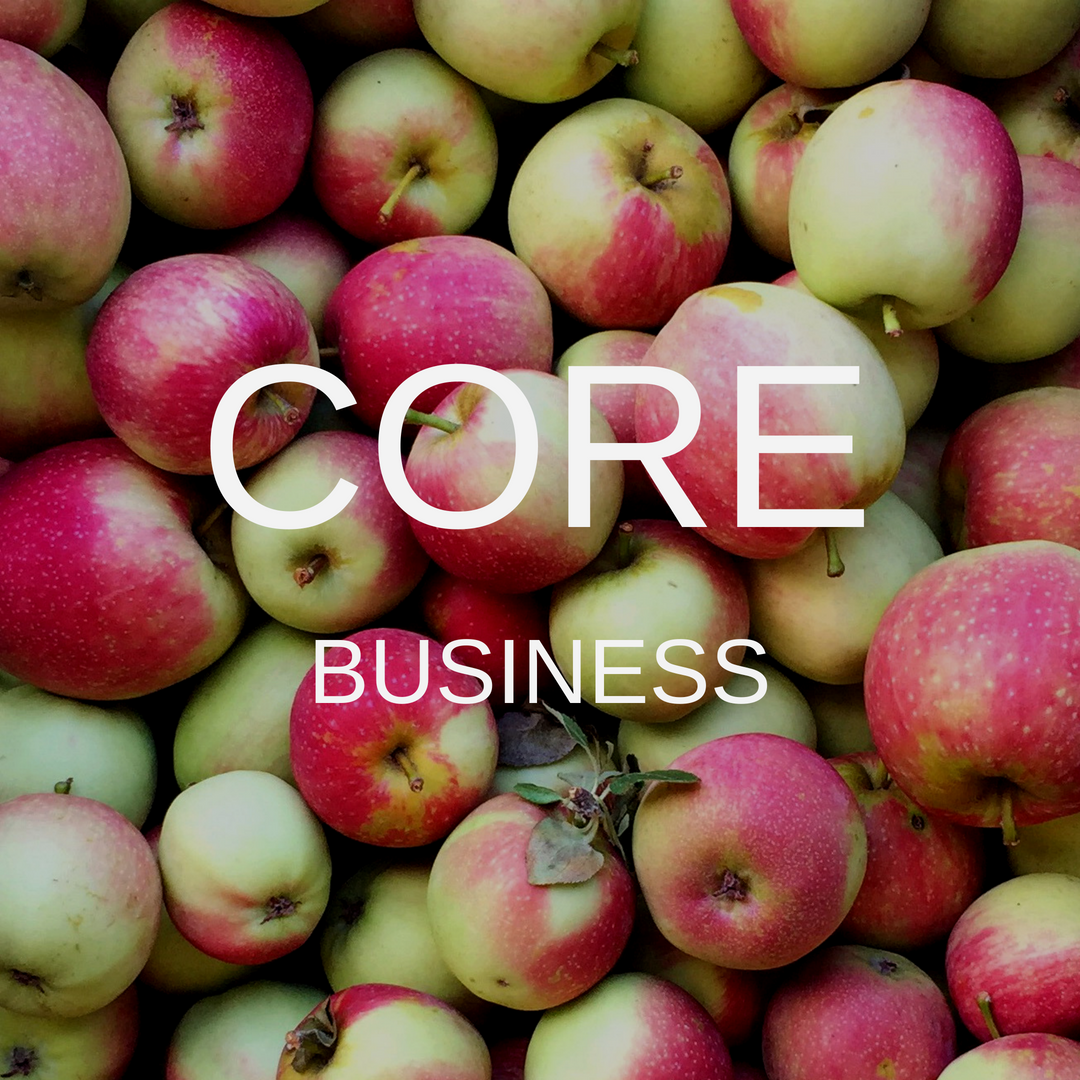 Corebusiness